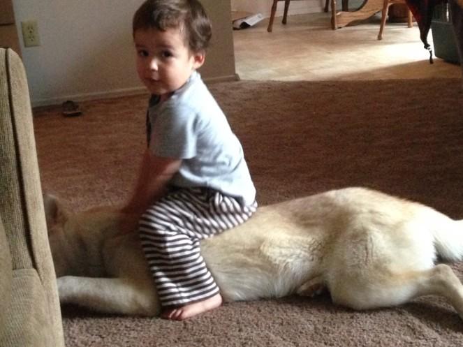 DAMIAN ON WOLFI
