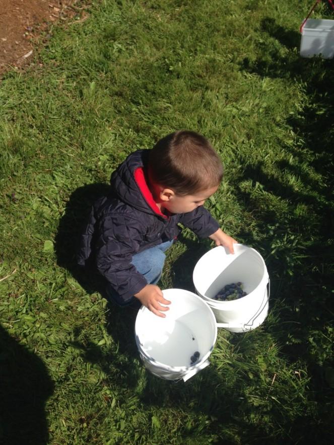 bucket dumping