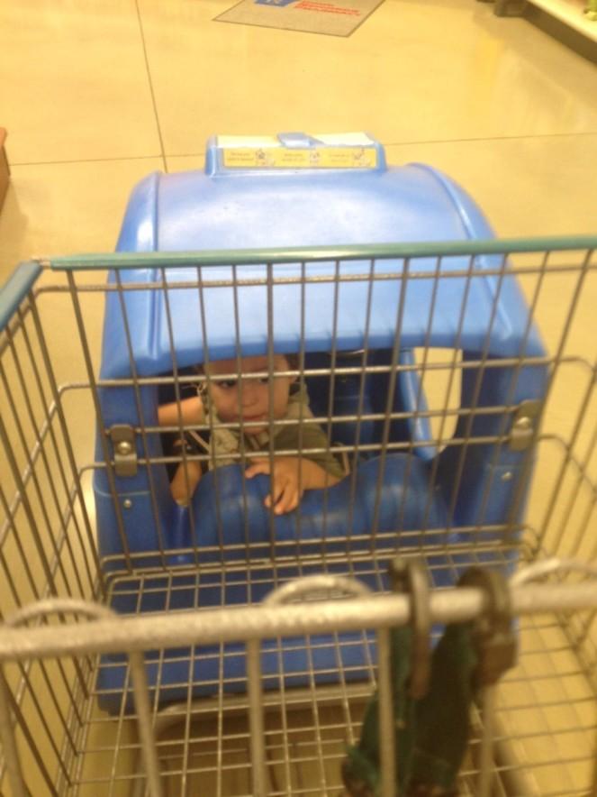 Damian cart