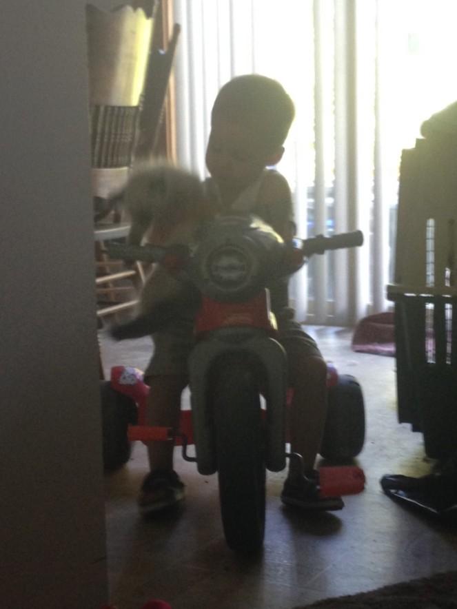 Damian chapo moto