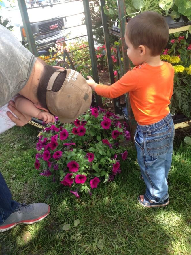 more flowere farmers market