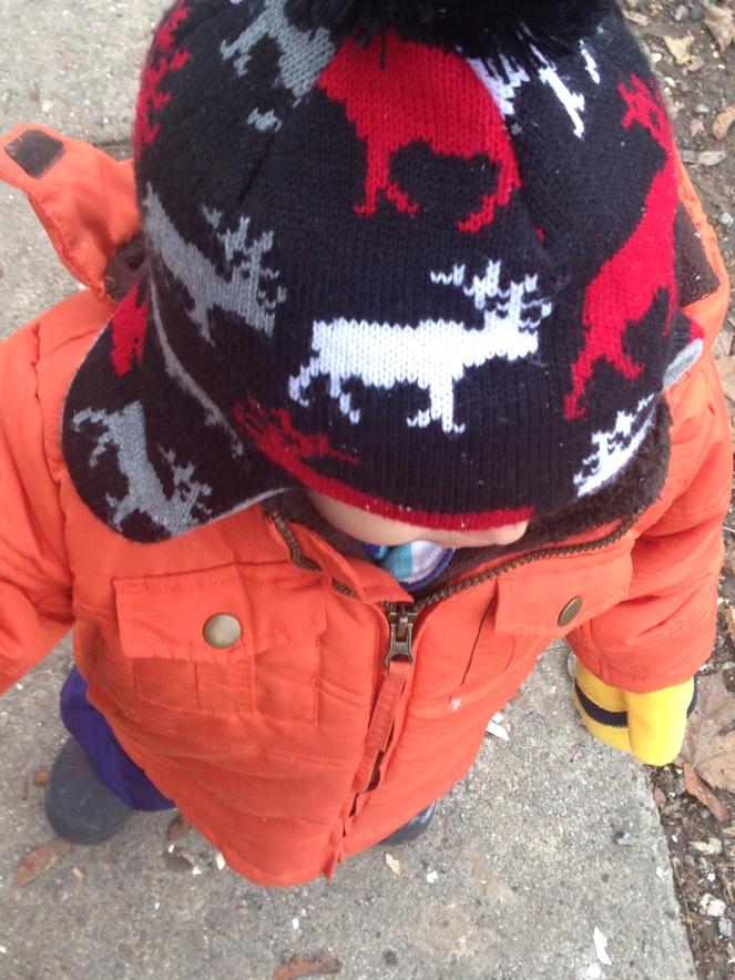 snow-day-nov-19-001