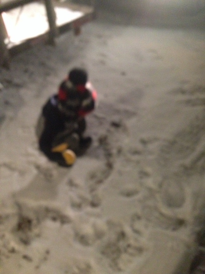 snowlalibday-048
