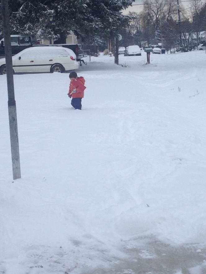 snowlalibday-072