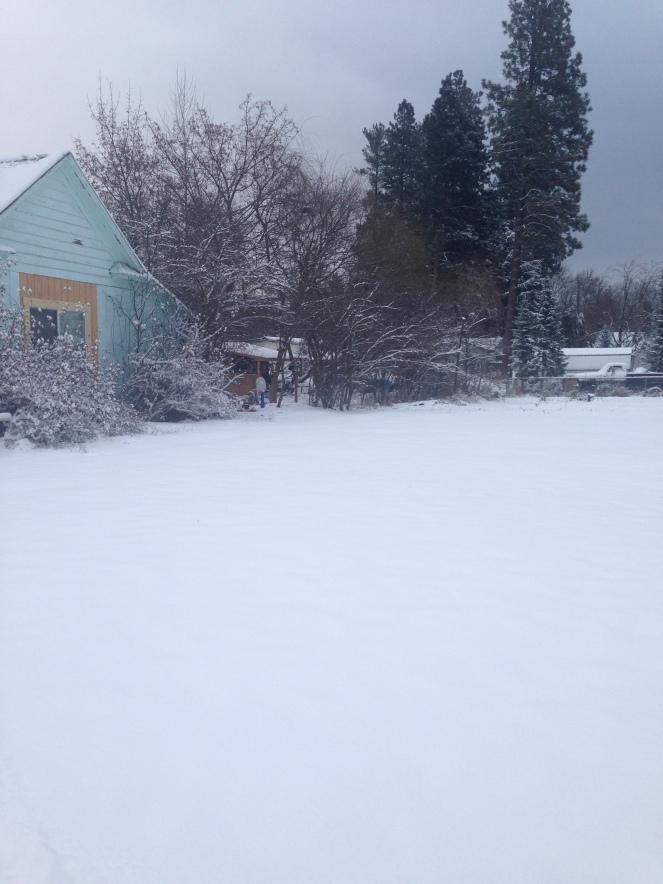 snowlalibday-082