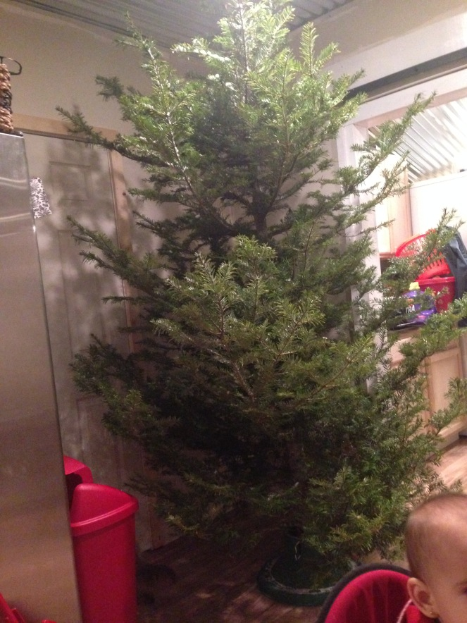 tree-002